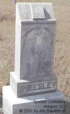 SEATON, WILLIAM F. - Alamosa County, Colorado | WILLIAM F. SEATON - Colorado Gravestone Photos