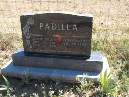 PADILLA, LILIOSA - Archuleta County, Colorado | LILIOSA PADILLA - Colorado Gravestone Photos