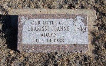 ADAMS, CHARISSE JEANNE - Baca County, Colorado   CHARISSE JEANNE ADAMS - Colorado Gravestone Photos