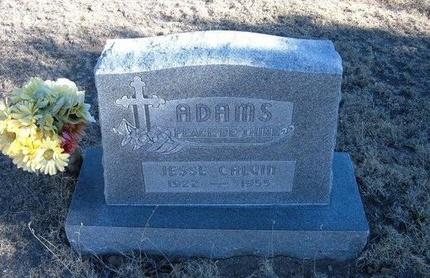 ADAMS, JESSE CALVIN - Baca County, Colorado   JESSE CALVIN ADAMS - Colorado Gravestone Photos