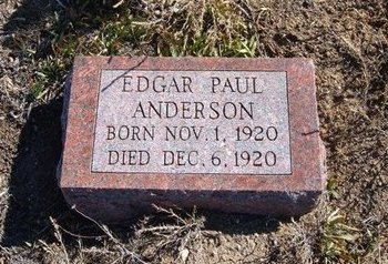 ANDERSON, EDGAR PAUL - Baca County, Colorado | EDGAR PAUL ANDERSON - Colorado Gravestone Photos