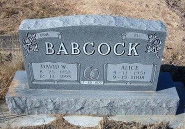 BABCOCK, ALICE FAY - Baca County, Colorado | ALICE FAY BABCOCK - Colorado Gravestone Photos
