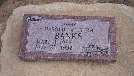 "BANKS, HAROLD WILBURN SONNY"" - Baca County, Colorado   HAROLD WILBURN SONNY"" BANKS - Colorado Gravestone Photos"