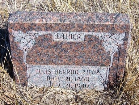 BIENZ, ELLIS HERROD - Baca County, Colorado | ELLIS HERROD BIENZ - Colorado Gravestone Photos