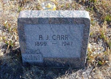 CARR, A J - Baca County, Colorado | A J CARR - Colorado Gravestone Photos
