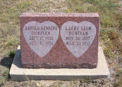 DUNIVAN, HAROLD DEWAINE - Baca County, Colorado | HAROLD DEWAINE DUNIVAN - Colorado Gravestone Photos