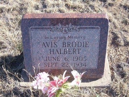 HALBERT, AVIS BRODIE - Baca County, Colorado | AVIS BRODIE HALBERT - Colorado Gravestone Photos