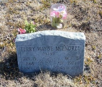 MCENDREE, TERRY WAYNE - Baca County, Colorado | TERRY WAYNE MCENDREE - Colorado Gravestone Photos
