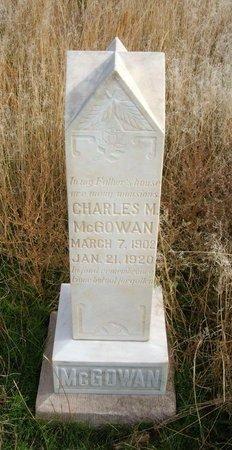 MCGOWAN, CHARLES M - Baca County, Colorado | CHARLES M MCGOWAN - Colorado Gravestone Photos