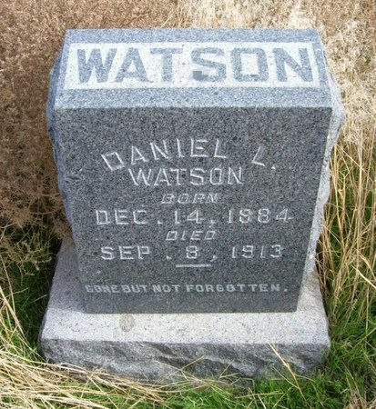 WATSON, DANIEL L - Baca County, Colorado | DANIEL L WATSON - Colorado Gravestone Photos