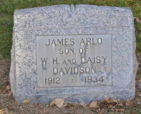 DAVIDSON, JAMES ARLO - Bent County, Colorado | JAMES ARLO DAVIDSON - Colorado Gravestone Photos