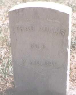 ADAMS, THAD - Boulder County, Colorado | THAD ADAMS - Colorado Gravestone Photos