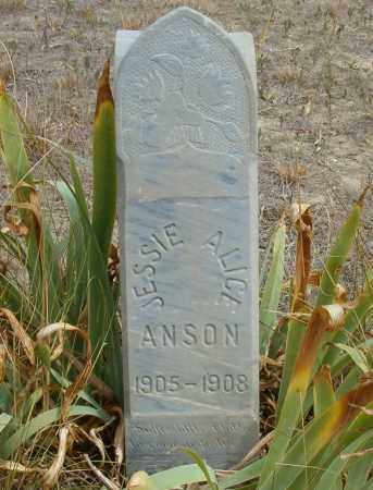ANSON, JESSIE ALICE - Boulder County, Colorado | JESSIE ALICE ANSON - Colorado Gravestone Photos