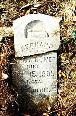 BOWER, BERNARD (INFANT) - Boulder County, Colorado | BERNARD (INFANT) BOWER - Colorado Gravestone Photos