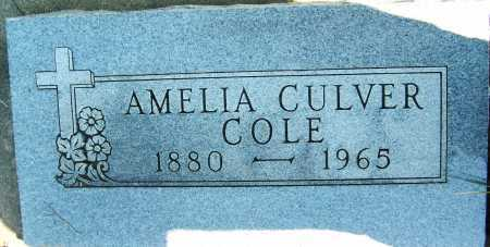 COLE, AMELIA - Boulder County, Colorado | AMELIA COLE - Colorado Gravestone Photos