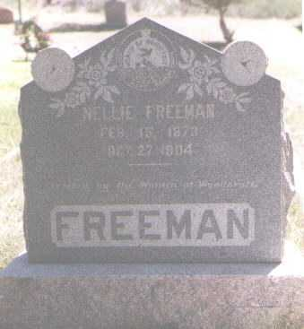 FREEMAN, NELLIE - Boulder County, Colorado | NELLIE FREEMAN - Colorado Gravestone Photos
