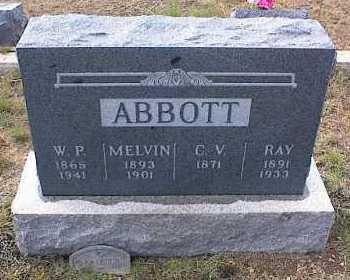 ABBOTT, RAY - Chaffee County, Colorado | RAY ABBOTT - Colorado Gravestone Photos