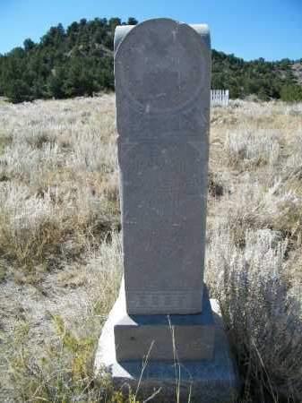 ALLENDER, WILLIAM H. - Chaffee County, Colorado   WILLIAM H. ALLENDER - Colorado Gravestone Photos