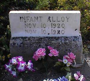 ALLOY, INFANT - Chaffee County, Colorado | INFANT ALLOY - Colorado Gravestone Photos
