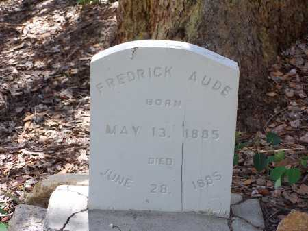 AUDE, FREDRICK - Chaffee County, Colorado | FREDRICK AUDE - Colorado Gravestone Photos