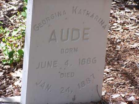 AUDE, GEORGINA KATHARINA - Chaffee County, Colorado | GEORGINA KATHARINA AUDE - Colorado Gravestone Photos