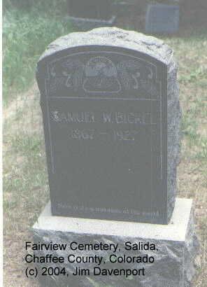 BICKEL, SAMUEL - Chaffee County, Colorado | SAMUEL BICKEL - Colorado Gravestone Photos