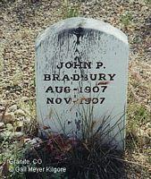 BRADBURY, JOHN - Chaffee County, Colorado | JOHN BRADBURY - Colorado Gravestone Photos