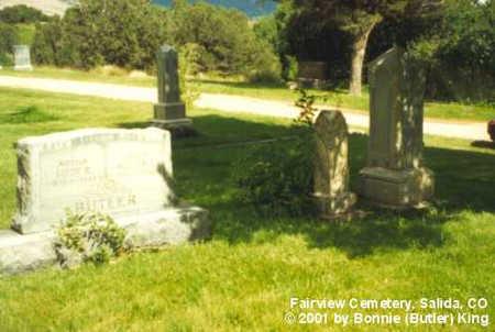 BUTLER, FAMILY PLOT - Chaffee County, Colorado | FAMILY PLOT BUTLER - Colorado Gravestone Photos