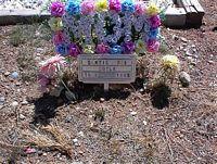 DOYLE, BONNIE DEE - Chaffee County, Colorado | BONNIE DEE DOYLE - Colorado Gravestone Photos