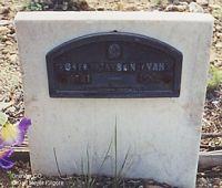 EVANS, ROBERT JAYSON - Chaffee County, Colorado | ROBERT JAYSON EVANS - Colorado Gravestone Photos