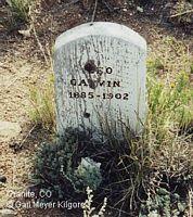 GALVIN, LEO - Chaffee County, Colorado | LEO GALVIN - Colorado Gravestone Photos