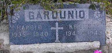 GARDUNIO, HAROLD - Chaffee County, Colorado | HAROLD GARDUNIO - Colorado Gravestone Photos
