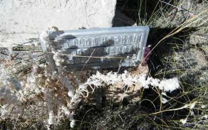 HAPHON, MATILDA - Chaffee County, Colorado | MATILDA HAPHON - Colorado Gravestone Photos