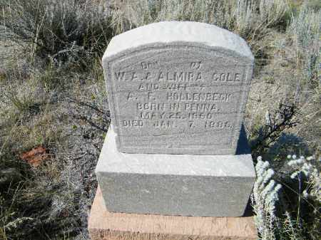 HOLLENBECK, CARRIE B - Chaffee County, Colorado | CARRIE B HOLLENBECK - Colorado Gravestone Photos