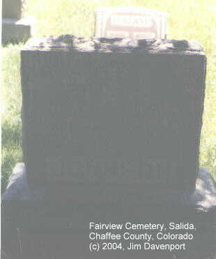 JOHNSON, WILLIAM N. - Chaffee County, Colorado | WILLIAM N. JOHNSON - Colorado Gravestone Photos