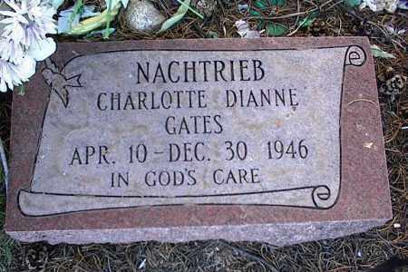 NACHTRIEB, CHARLOTTE DIANE GATES - Chaffee County, Colorado | CHARLOTTE DIANE GATES NACHTRIEB - Colorado Gravestone Photos
