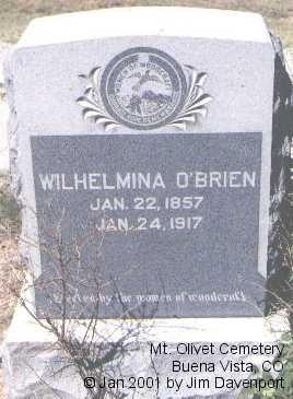 O'BRIEN, WILHELMINA - Chaffee County, Colorado | WILHELMINA O'BRIEN - Colorado Gravestone Photos