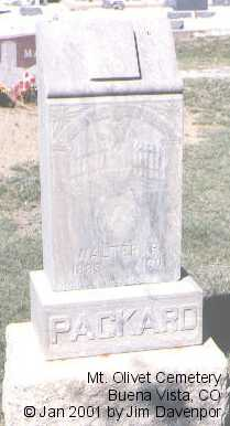 PACKARD, WALTER R. - Chaffee County, Colorado | WALTER R. PACKARD - Colorado Gravestone Photos