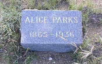 PARKS, ALICE - Chaffee County, Colorado | ALICE PARKS - Colorado Gravestone Photos