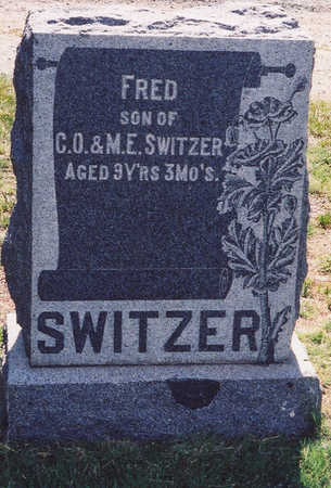 SWITZER, FRED - Chaffee County, Colorado | FRED SWITZER - Colorado Gravestone Photos