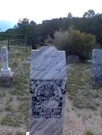 TULL, ELIZABETH - Chaffee County, Colorado   ELIZABETH TULL - Colorado Gravestone Photos