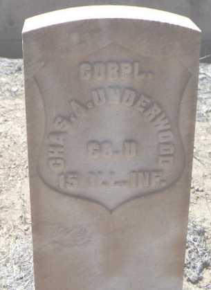 UNDERWOOD, CHAS. A. - Chaffee County, Colorado | CHAS. A. UNDERWOOD - Colorado Gravestone Photos