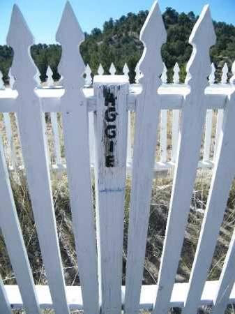 UNKNOWN, AUGGIE - Chaffee County, Colorado | AUGGIE UNKNOWN - Colorado Gravestone Photos