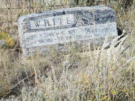 WHITE, BABY - Chaffee County, Colorado | BABY WHITE - Colorado Gravestone Photos