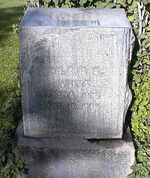 WHITE, WILBUR E. - Chaffee County, Colorado | WILBUR E. WHITE - Colorado Gravestone Photos