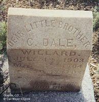 WILLARD, C. DALE - Chaffee County, Colorado | C. DALE WILLARD - Colorado Gravestone Photos