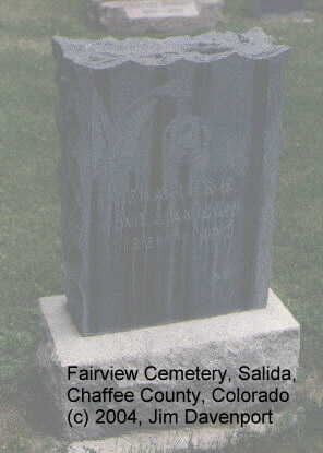 WILLIAMSON, CHARLES E. - Chaffee County, Colorado | CHARLES E. WILLIAMSON - Colorado Gravestone Photos
