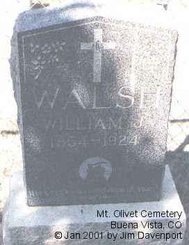 WALSH, WILLIAM J. - Chaffee County, Colorado | WILLIAM J. WALSH - Colorado Gravestone Photos