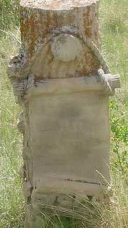 ALLEN, LEE P. - Clear Creek County, Colorado | LEE P. ALLEN - Colorado Gravestone Photos