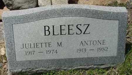 BLEESZ, ANTONE - Clear Creek County, Colorado | ANTONE BLEESZ - Colorado Gravestone Photos